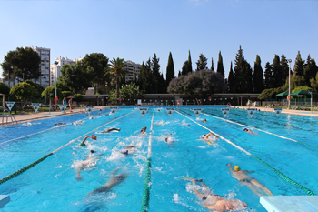 swimming11